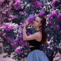 Сиреневый цвет :: Анита Гавриш