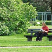 Отдых в парке :: Валентина К