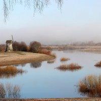 Розовый туман. :: Нина Бурченкова.