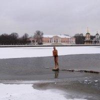 Зима пришла :: Анна Воробьева