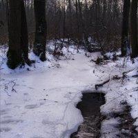 Ручей подо льдом :: Анна Воробьева