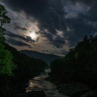 В лунном свете... :: Юлия Бабитко