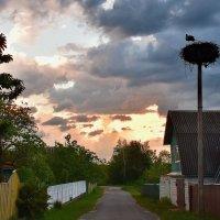 Вечер  в  деревне. :: Валера39 Василевский.