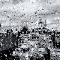 В серых каплях дождя... :: Копыткина Юлия