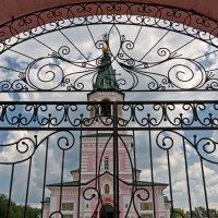 Кружево ворот. Городище. Оренбургская область :: MILAV V