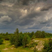 ветер в небе гонит тучи... :: Александр Прокудин