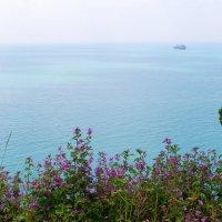 Цветы и море :: Людмила Монахова