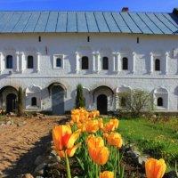 тюльпаны в монастыре :: Сергей Кочнев