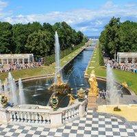 Большой фонтан в Петродворце :: Олег Денисов