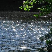 Лучи солнышка на озере :: Маргарита Батырева