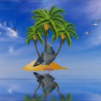 On a desert island. (На необитаемом острове). :: Anatol Livtsov