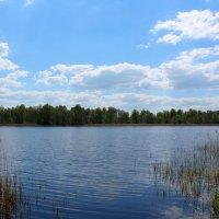 Водные просторы :: Катя Бокова