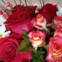 !2 июня - День РОССИИ! С ПРАЗДНИКОМ,друзья! :: марина ковшова