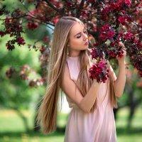 Райский сад :: Роман Ланцетов