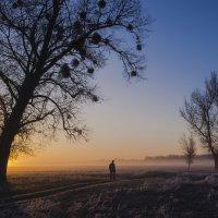 Весной на рассвете... :: Сергей Корнев
