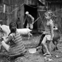 В деревне. :: Larisa Gavlovskaya