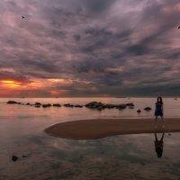 Воскресная прогулка на Финский залив :: Владимир Колесников