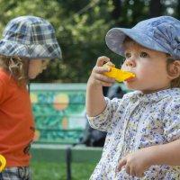 Детская площадка :: Елена Трубникова