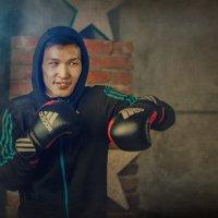 Весёлый боксёр :: Roman Sergeev