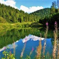 Озерцо :: Сергей Чиняев