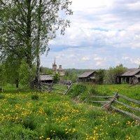В заброшенной деревне тишина... :: Александр Лукин