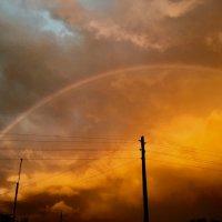 Радуга после дождя :: Любовь Шугинина