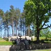 У фонтана, Нарва-Йыэсуу, Эстония :: veera (veerra)
