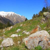 Лето в ущелье Адыл-Су. Высота около 2300м. :: Vladimir 070549