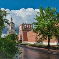 У стен Донского монастыря. :: Сергей Басов