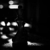 Noir Chess Guys :: Виталий Шевченко