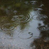 дождь :: Екатерина