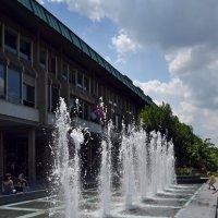 Белградские фонтаны :: Ольга