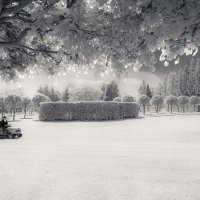 Вот такое холодное лето 17-го. :: Андрей Синявин
