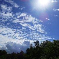 Солнце, небо, облака... :: Маргарита Батырева
