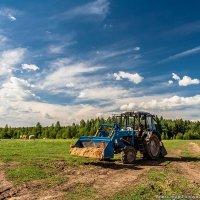 Лето на ферме :: Александр Горбунов