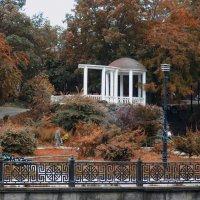 Тёплая осень :: Валерий Басыров