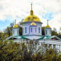 Золотые купола Алексеевской церкви Благовещенского монастыря :: Андрей Головкин