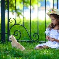 Кои и девочка :: Наталья Шатунова