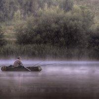 Ловец дзен :: Александр Попков