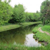 Река Лихоборка в июне :: Дмитрий Никитин