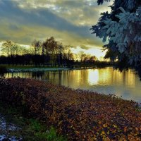 Закат над предзимнем прудом... :: Sergey Gordoff
