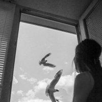 Окно :: Валерий Чернов