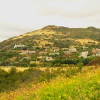 Голливудские холмы :: Николай Танаев