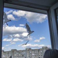 Вечер дома :: Валерий Чернов