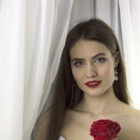 Красавица :: Albertik Baxton