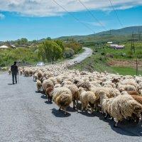 Армения. Одна из дорог :: Борис Гольдберг