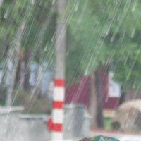 Что мне снег что мне зной, что мне дождик проливной, когда мои друзья со мной! :: Ирина Атаманская