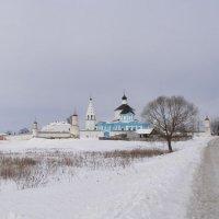 Монастырь в старом Бобренево :: Анна Воробьева