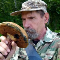 Сколько же у тебя на шляпке годовых колец, однако!:) :: Андрей Заломленков