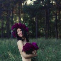 в лесу :: Olga